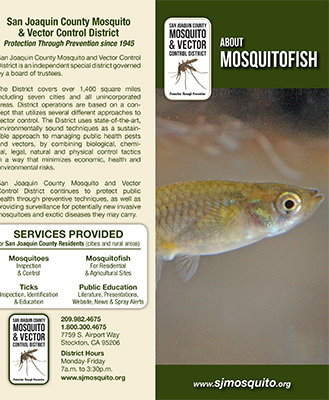 About Mosquitofish Brochure