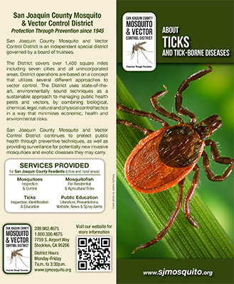 About Ticks and Tick-Borne Diseases